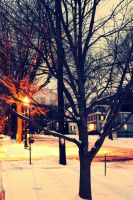 First Snow by star1luver2006