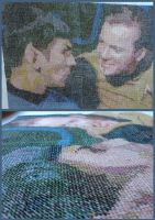 Kirk and Spock Cross Stitch by theygotme