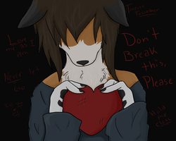 Don't Break This... Please... by Rising-At-Midnight