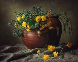 Spring still life with a snail by Daykiney