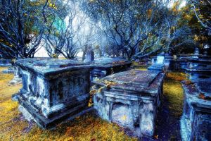 Cemetery by pangwei