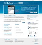CRM Culture Website by dFEVER