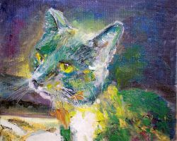 Lilly the Cat by thecip