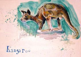 a kangaroo by starrywaters