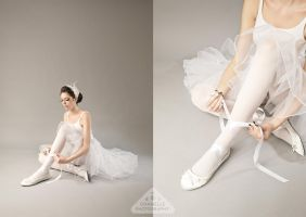 Black Swan White Swan by chamellephoto