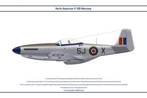 Mustang GB 126 Sqn 1 by WS-Clave