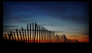 Over the Fence by shuttermonkey