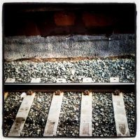 Tracks by Mz-Synyster