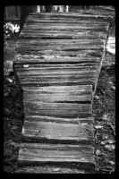 Wooden Pathways  (04) (Black and White) by SKiNBuS