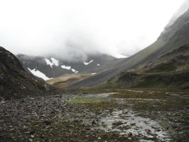Crow's Pass Wet Landscape 1 by prints-of-stock