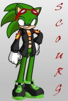 scourge the hedgehog by piepiepieman