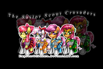 The Sailor Scout Crusaders [Group Sticker Preview} by EmpressOfSakura