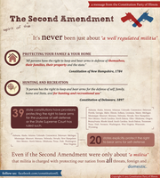 Second Amendment Infographic by computergeniuz