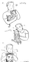 Stevetony_soft kitty by krusca
