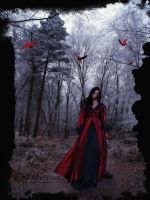 Cool Afternoon Walk by FairieGoodMother