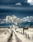 Utah Landscape by coulombic