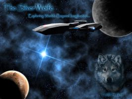 My ship - the Silver Wolfe by Todd-Sullest