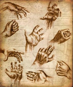 Hands study by yenefer