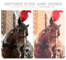 Photoshop Action - Warm Sunshine by KennethStokes