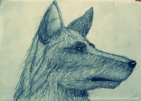 Alsatian dog by StupidInLove