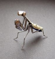 Mantis No 19 by AMechanicalMind