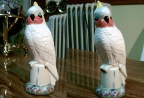 Cockatoo Slip Mold by Avi-the-Avenger