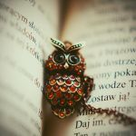 Owl by BlueColoursOfNature