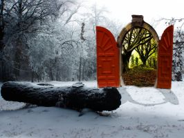 The Red Door by Astralview