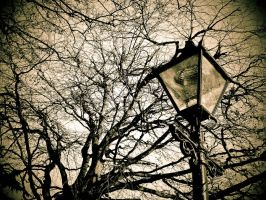 Sepia Street light by redcatmoonlight
