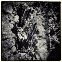 Trees and Stones 05 by HorstSchmier