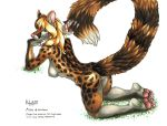 Arya the Genet by KalahariFox