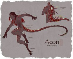 Acon the Venekai by shorty-antics-27