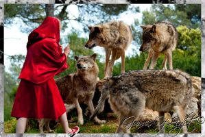 Chaperon Rouge 2 by GamesOfLight