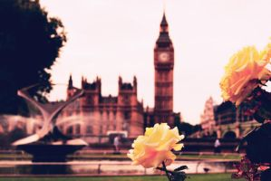 Big Ben's roses by AntrodiVi