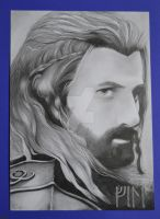 I belong with my brother! - Fili - The Hobbit BOFA by Rennue