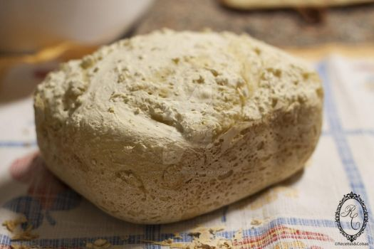 Basic Gluten Free Bread in the Bread Machine by goncalo-lopes