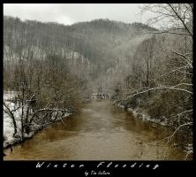 Winter Flooding by TimLaSure