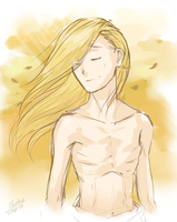 FMA - Feeling the wind by Mistrel-Fox