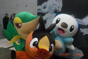 Snivy, Tepig and Oshawott by MidnaLoverSilvs