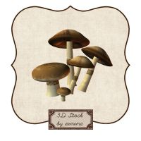 3D Mushrooms by zememz