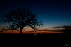 Sky reference library shoot 7 by adict-drek