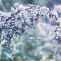 Winter Song :: by talk2hand