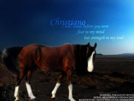 CHRiSTiaNo by Theliquidspoon