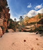 Zion Stream Bed Dry 2 by houstonryan