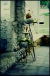 Bicycle by x-ReMuSik-x