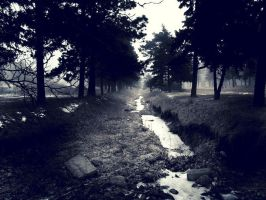Trail by tinabob