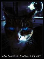 Catimus Prime! by Xe4ro