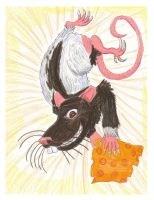 Gift 2010 - Rat for Wolf-Lion by CrystalMarineGallery