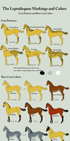 Leptailequus Color Chart by Utakame