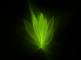 3D Plant by MurdocSnook